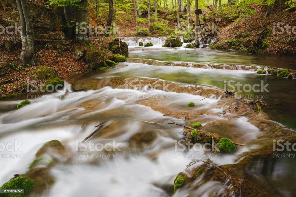 Mountain river in the spring forest. Grza river, Serbia stock photo