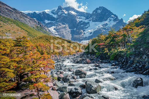 Mountain river in Torres del Paine National Park at sunny day and blue sky, Patagonia, Chile