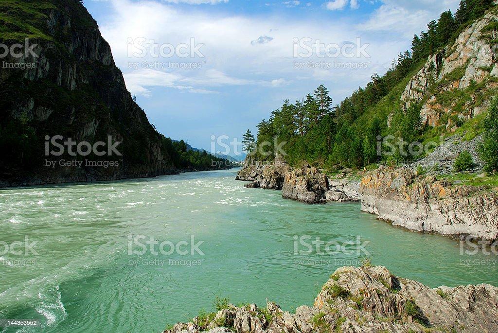 Mountain river Katun royalty-free stock photo