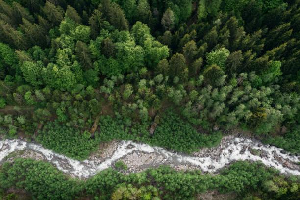 Mountain River (Austria) stock photo