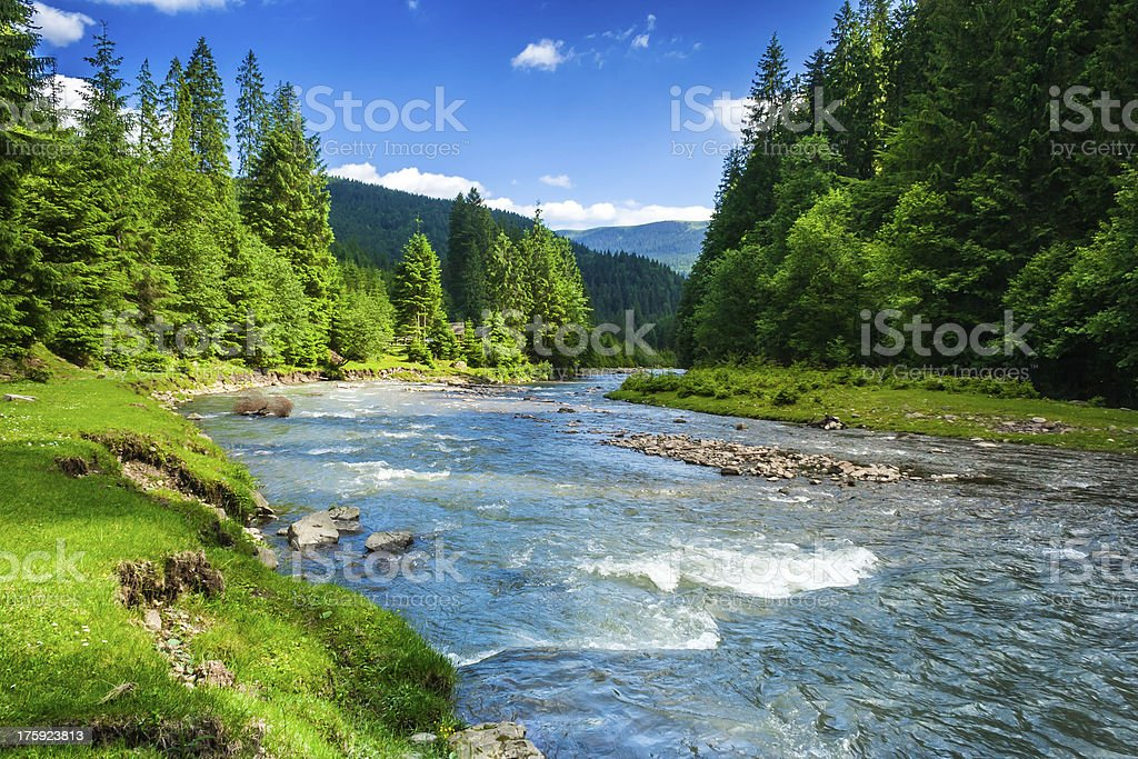 Mountain river – Foto