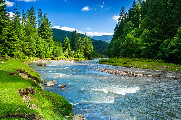 mountain river - river stock photos and pictures