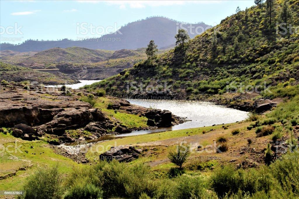 Mountain river royaltyfri bildbanksbilder