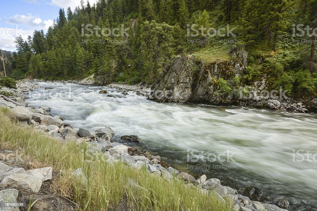 Mountain River rushing through Forest royalty-free stock photo