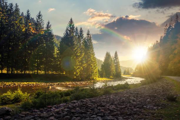 山河在日落時蜿蜒穿過森林 - 大自然 個照片及圖片檔