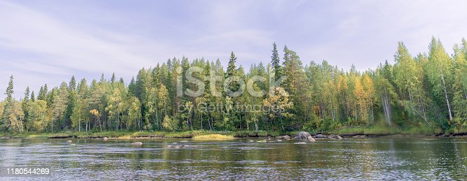 Mountain river with forest on the banks.