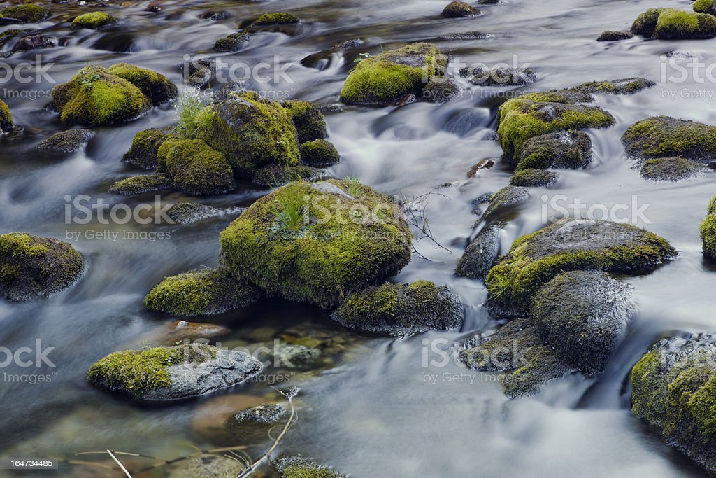 Mountain river with stones covered by moss royalty-free stock photo