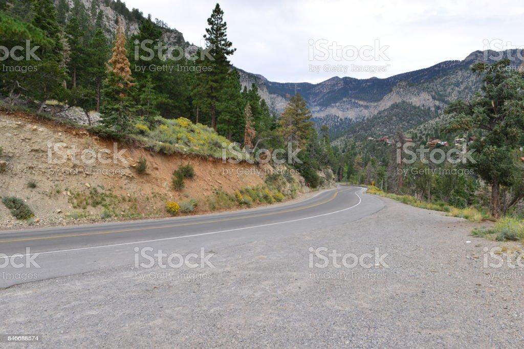A mountain road at Mount Charleston. stock photo
