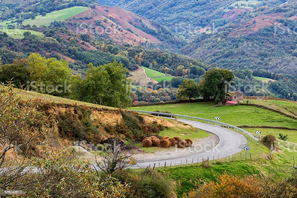 mountain road in navarra - foto de stock