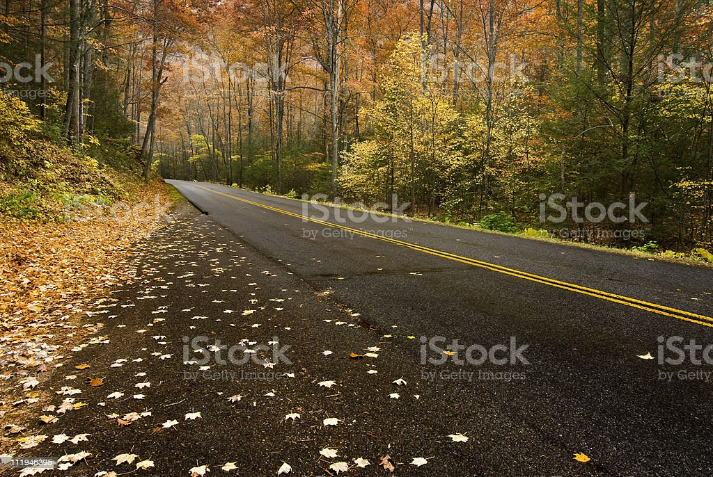 Mountain Road in the Rain royalty-free stock photo