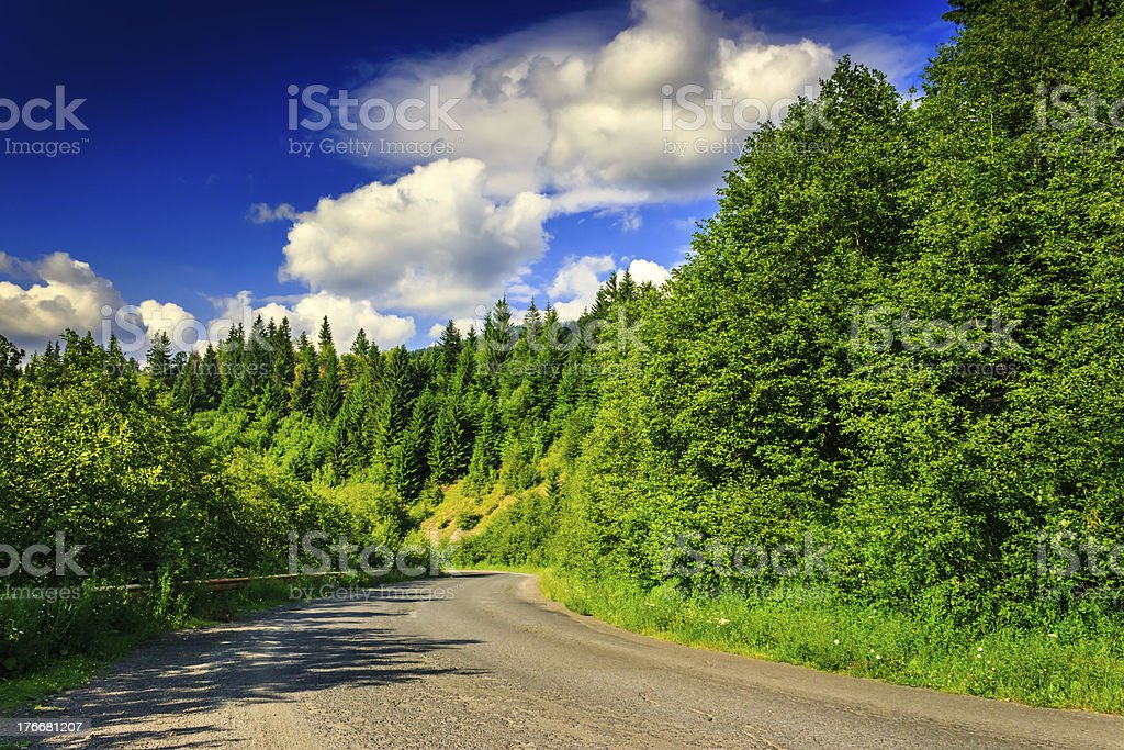 mountain route through pine forest on a summer evening horizonta royalty-free stock photo