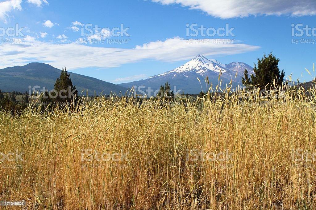 Mountain scape royalty-free stock photo