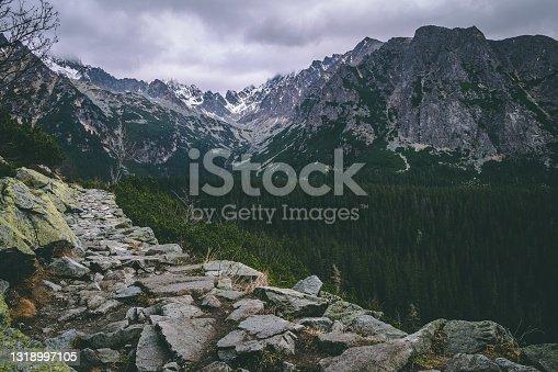 istock Mountain setting with coniferous trees and majestic mountains. Beautiful wild nature. Stony hiking trail to mountains. High Tatras, Slovakia. Photo on the theme wildlife, mountains, trekking, outdoor. 1318997105