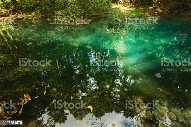 Mountain spring forest reflection in water surface romania picture id1127581579?b=1&k=6&m=1127581579&s=612x612&h=kuno7gwdzbdfrlappdm 8juuvif7okczefkud qgud8=