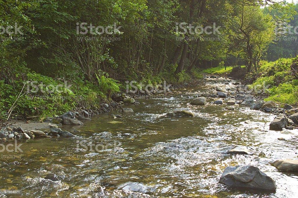 Mountain spring royalty-free stock photo