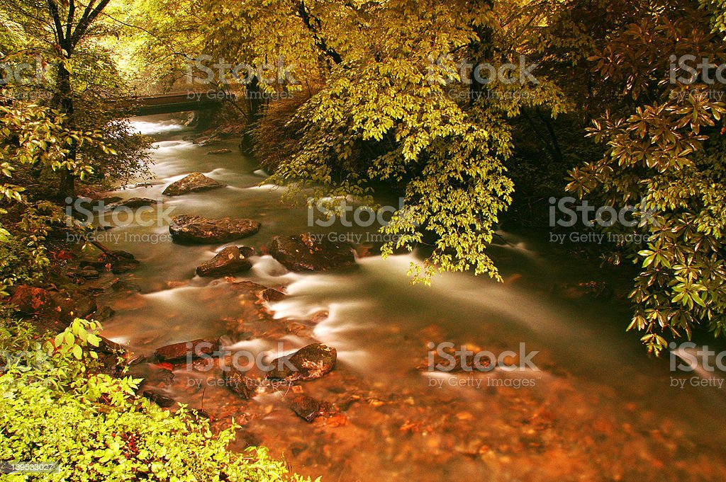 Mountain Stream after a Storm royalty-free stock photo