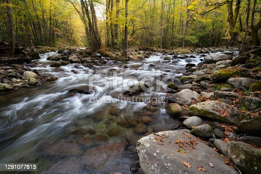 Appalacian Mountain Stream and Autumn Foliage. Great Smoky Mountains National Park, Tennessee
