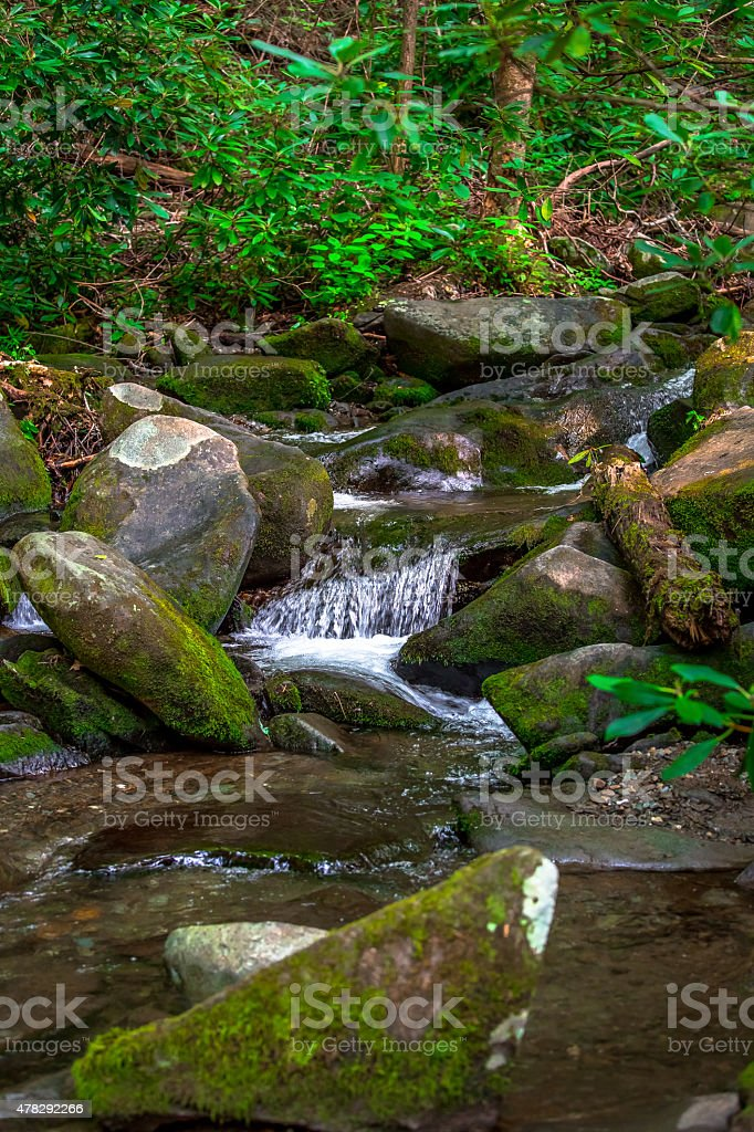 Mountain stream and mossy rocks (Vertical) stock photo