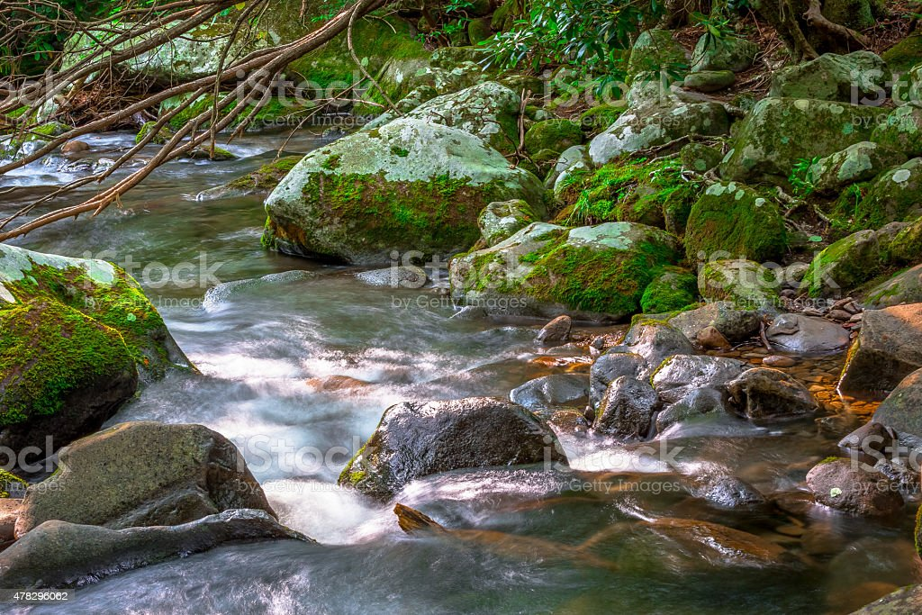 Mountain stream and mossy rocks stock photo