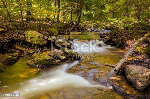istock Mountain Stream at Ricketts Glen 175396346