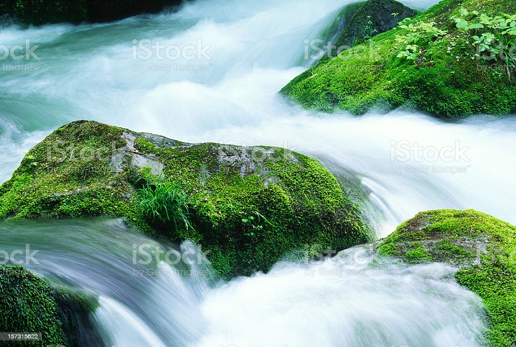 Mountain Stream Close Up royalty-free stock photo