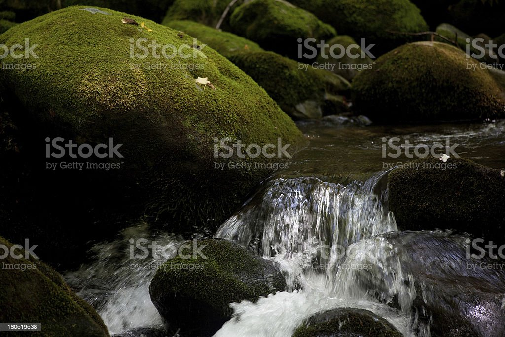 Mountain Stream flowing by moss covered rocks royalty-free stock photo