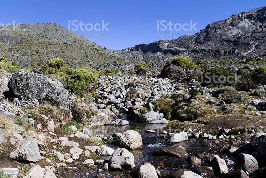 Mountain stream - horizontal royalty-free stock photo