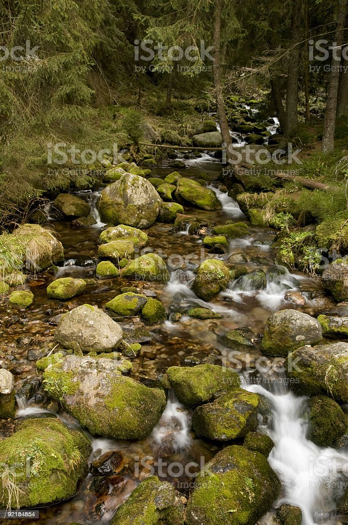 Mountain stream in autumn morning royalty-free stock photo