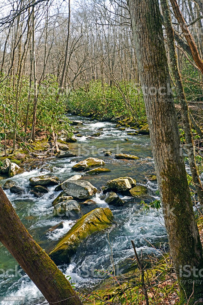 Mountain Stream in Early Spring stock photo