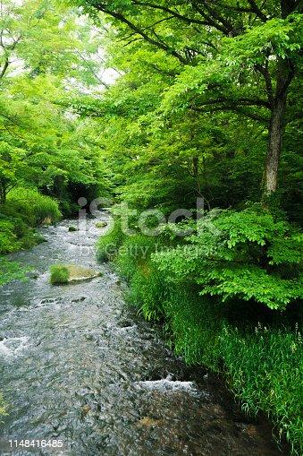Karuizawa, River, Flowing Water, Japan, Nagano Prefecture