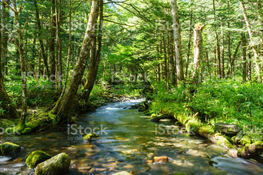 Mountain stream, Kamikochi stock photo