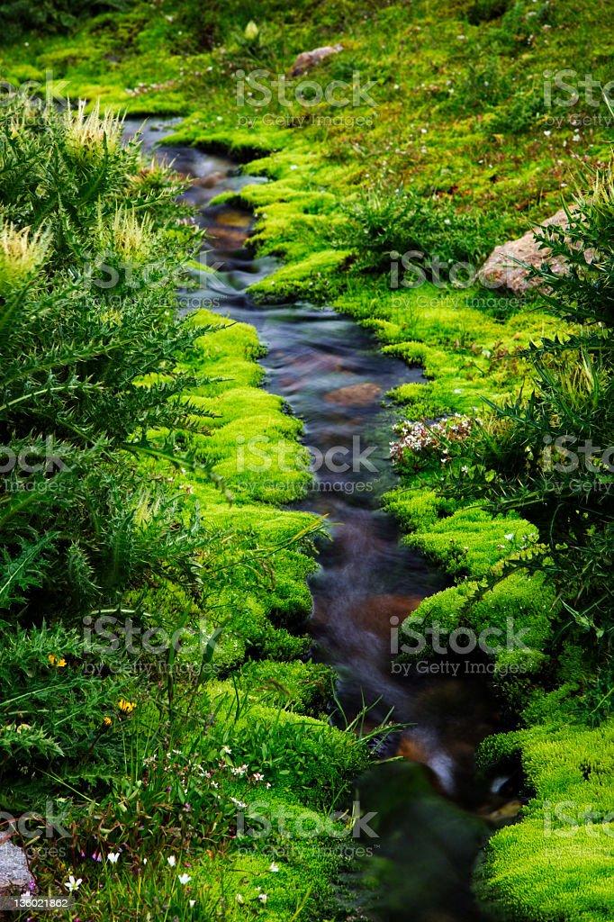 Mountain Stream (XXXL) stock photo