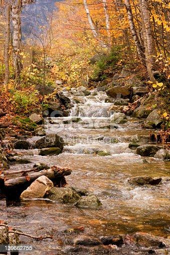 istock Mountain Stream 139662755