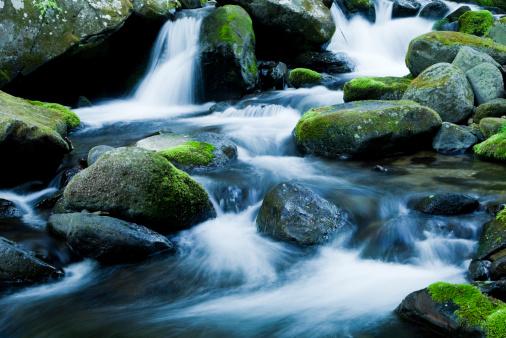 mountain stream flows through mossy rocks