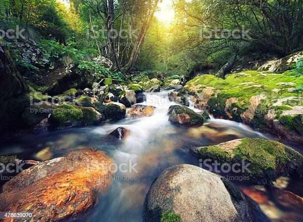 Photo of Mountain Stream