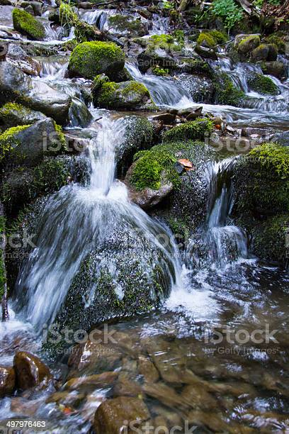 Photo of Mountain stream.