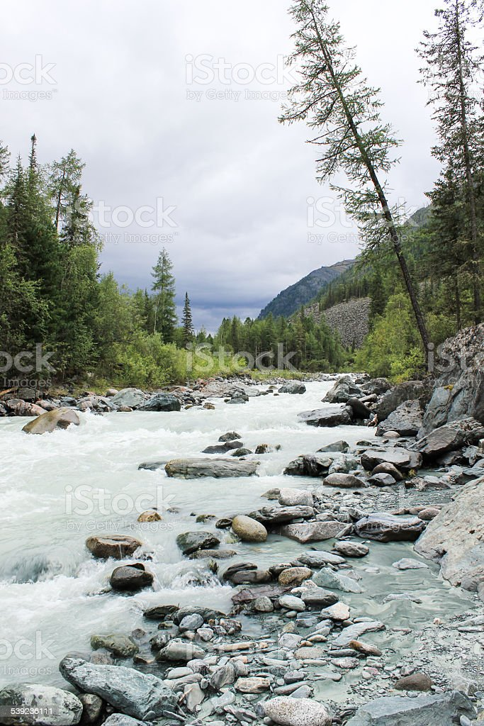 Río de montaña foto de stock libre de derechos