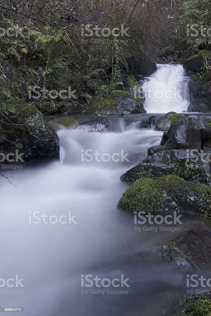 Mountain Stream Lizenzfreies stock-foto