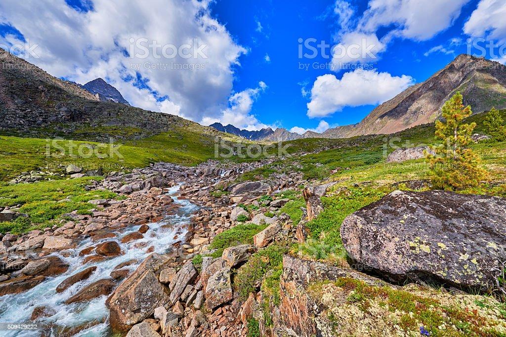 Mountain stream summer sunny day . Alpine Tundra stock photo