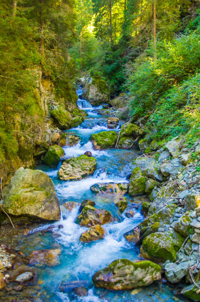 Mountain stream surrounded by greenery and woods stock photo