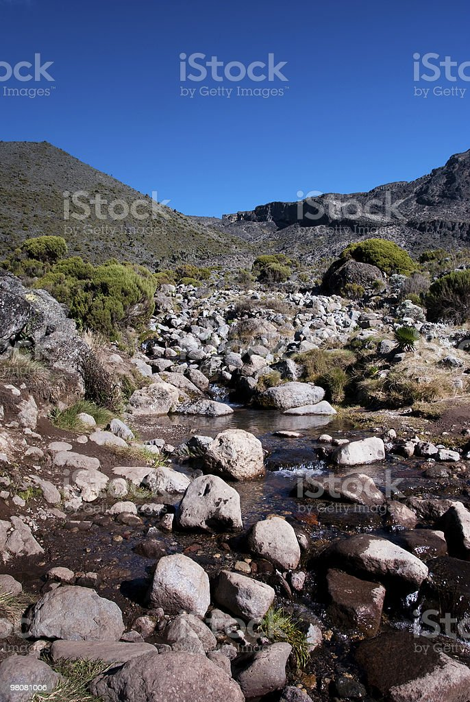 Mountain Stream - vertical royalty-free stock photo