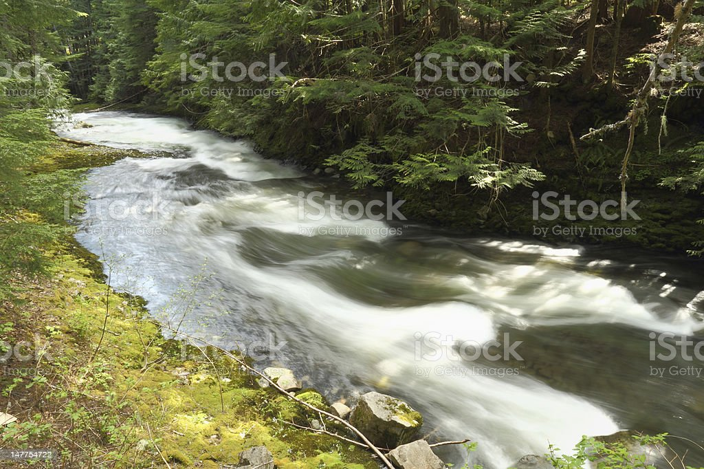 Mountain Stream, Whistler, British Columbia stock photo