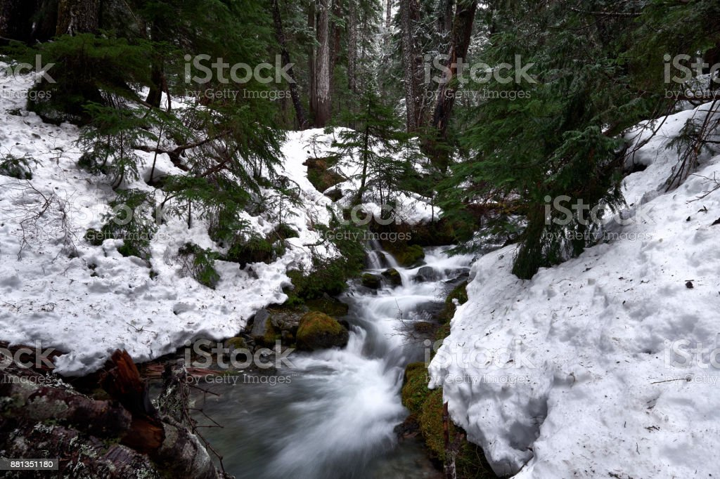 Mountain stream with snowbanks, trees stock photo