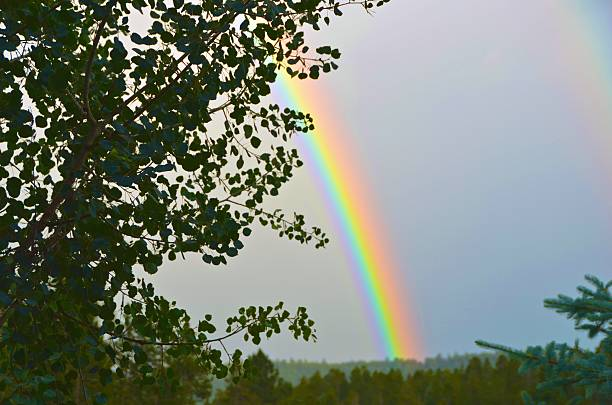Mountain Thunderstorm Double Rainbow stock photo