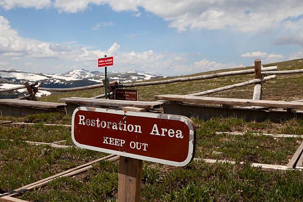 Mountain Top Vegetation Restoration stock photo
