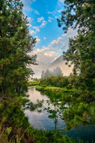 Mountain tops peaking between trees the early morning mist rises off the Wenatchee River near Leavenworth Washington stock photo