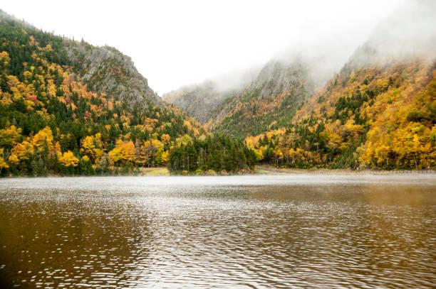bergtoppen gehuld in mist - dixville notch stockfoto's en -beelden