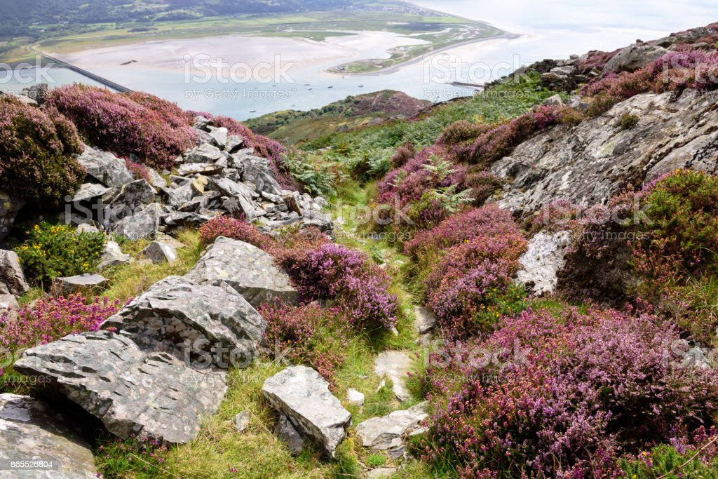 Mountain trail and  estuary of River Mawddach, Barmouth, Wales stock photo