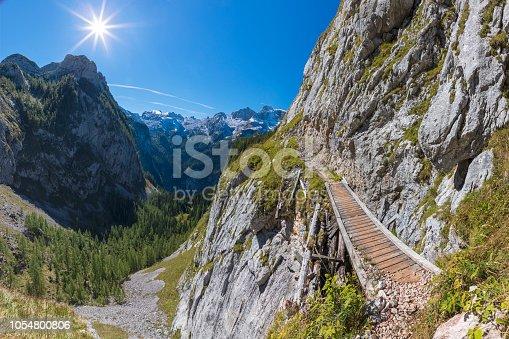 Hiking, Meadow, Summer, Berchtesgaden, Germany