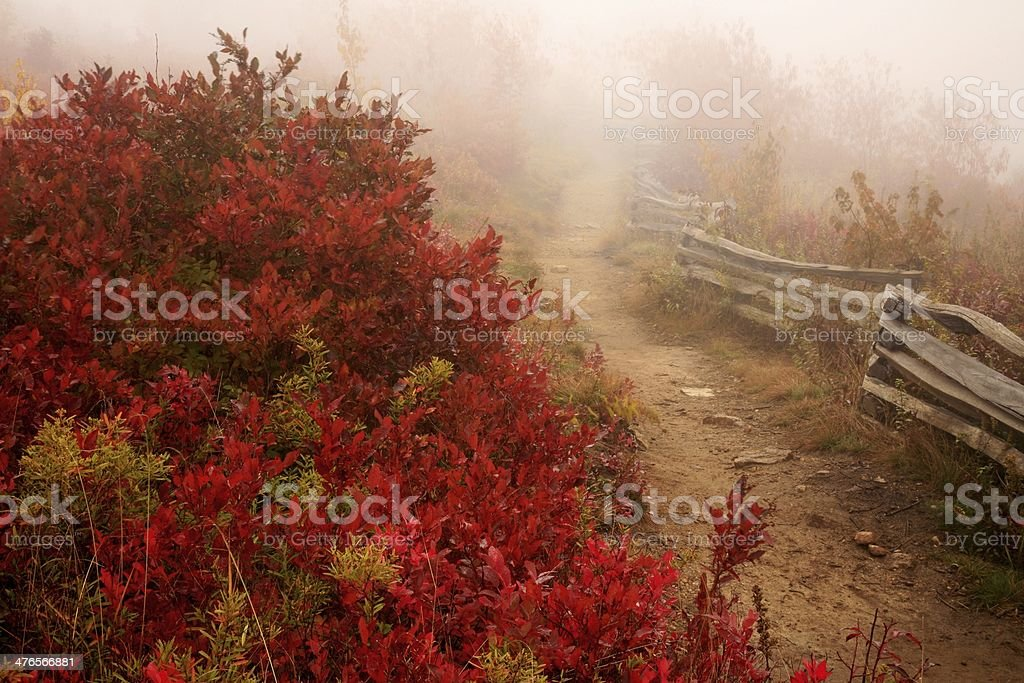 Mountain trail in fog royalty-free stock photo